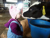 child meets a curious cow