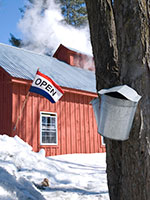 maple sugar house open in Spring