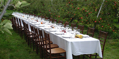 a dinner table in front of an apple orchard